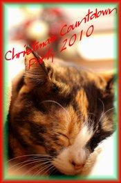 2010christmas_ban